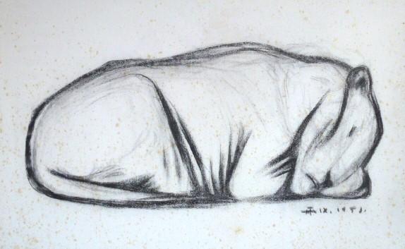 Schlafende Raubkatze – November 1953