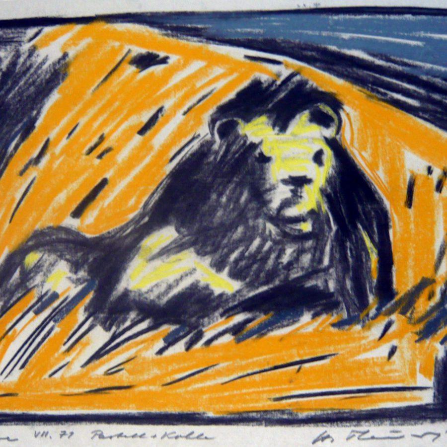 Liegender Löwe im orangen Gras – Juli 1971