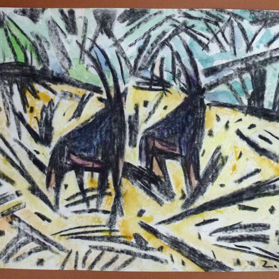Zwei Säbelantilopenböcke – Februar 1983